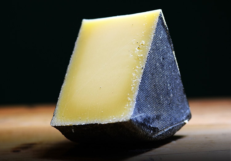 Retouched and enhanced close up of cheese laying upright for Cheese Plus