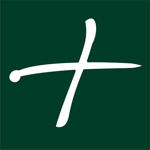 Plus icon for Cheese Plus logo design