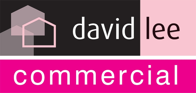 David Lee Estates Commercial branding design portrait logo