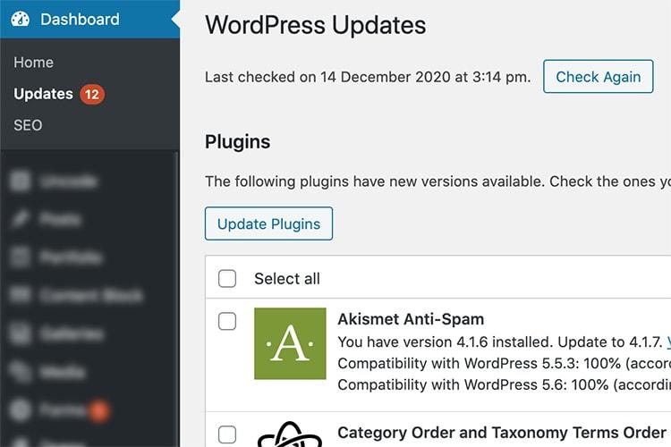 Close up of wordpress plugin update dashboard
